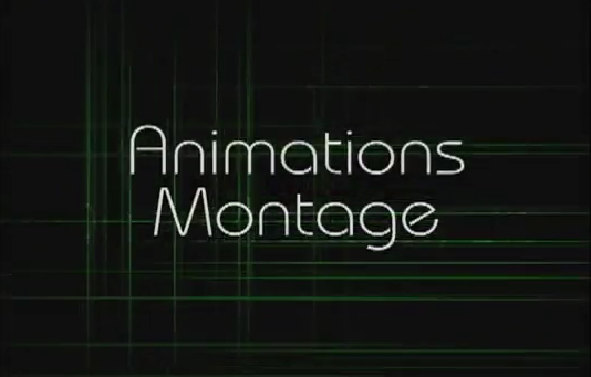 Animation Montage Slate